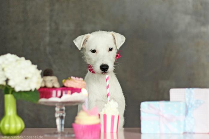 Geburtstag Elodie
